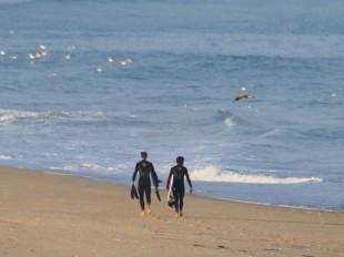Surfers sur la plage de Contis dans les Landes
