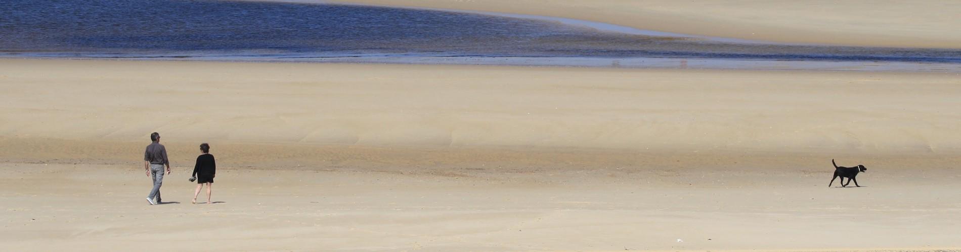 La plage de Contis dans le Sud-Ouest de la France